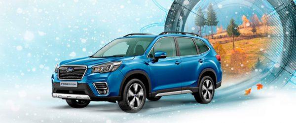 Купите новый Subaru и получите зимние шины в подарок